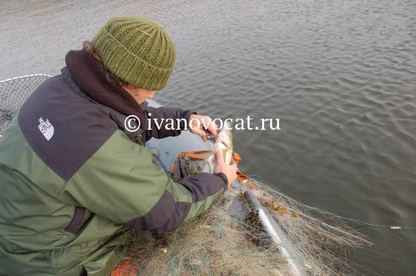 установка рыболовных сетей ответственность